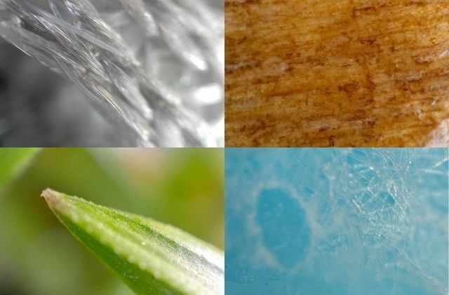 """From left to right: photo with the """"microscope lens"""" of the Oppo Find X3 Pro of an office chair, a wooden chair, a blade of grass and a surgical mask.  (Faustine Mazereeuw)"""