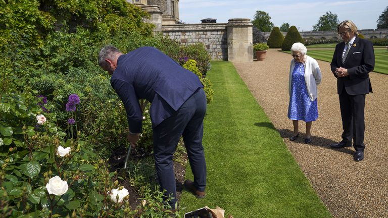 The Queen looks at the Duke of Edinburgh's rose planted in a border in the gardens of Windsor Castle